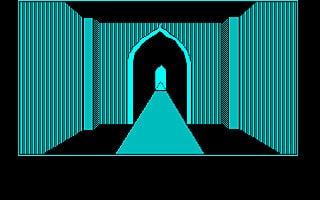 ゲームを起動すると最初に表示されるアニメーションのような迷路シーン。 実はこの迷路の地図を書きながらチマチマ進むことになるとは、この時はまだ知る由もありませんでした。